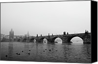 Flock Of Birds Canvas Prints - Charles Bridge, Praha Canvas Print by Gil Guelfucci