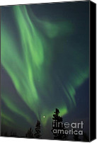 Northern Photo Canvas Prints - chasing lights II natural Canvas Print by Priska Wettstein