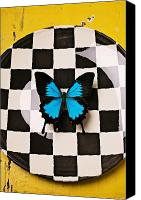 Yellow Canvas Prints - Checker plate and blue butterfly Canvas Print by Garry Gay