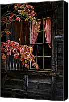 Cabin Window Canvas Prints - Checkered Past Canvas Print by Christine Annas