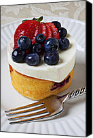 Strawberry Canvas Prints - Cheese cream cake with fruit Canvas Print by Garry Gay