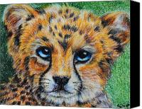 Cheetah Painting Canvas Prints - Cheetah Cub Canvas Print by Jai Johnson