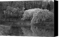 Scenery Prints Canvas Prints - Cherry Blossoms And The Pond - Holmdel Park Canvas Print by Angie McKenzie