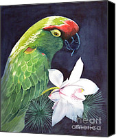Parrot Canvas Prints - Cherry Head Canvas Print by Robert Hooper