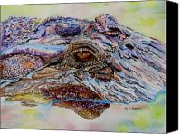 Gator Canvas Prints - Chester Canvas Print by Maria Barry