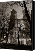 Night  Canvas Prints - Chicago Water Tower B W Canvas Print by Steve Gadomski