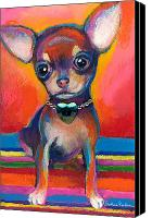 Austin Pet Artist Canvas Prints - Chihuahua dog portrait Canvas Print by Svetlana Novikova
