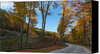 Scenic Roads Canvas Prints - Chillin on a Dirt Road Canvas Print by Bill  Wakeley