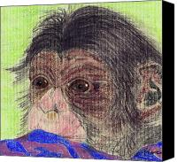 Chimpanzee Canvas Prints - Chimp With Blanket Canvas Print by Julie L Hoddinott
