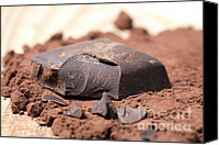 Piece Canvas Prints - Chocolate Canvas Print by Frank Tschakert
