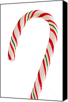 Cane Canvas Prints - Christmas candy cane Canvas Print by Elena Elisseeva