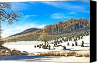Susan Leggett Canvas Prints - Christmas Tree Farm Canvas Print by Susan Leggett
