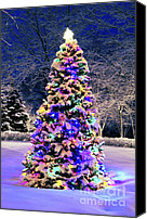 Snowy Night Canvas Prints - Christmas tree in snow Canvas Print by Elena Elisseeva