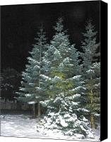 Christmas Cards Pyrography Canvas Prints - Christmas Tree Canvas Print by Laurie Kidd