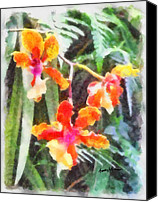 Chromatic Canvas Prints - ChromaticOrchids Canvas Print by Anthony Caruso
