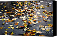 Grid Canvas Prints - City fall Canvas Print by Elena Elisseeva