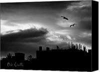 Seagull Photo Canvas Prints - City Sunset Canvas Print by Bob Orsillo