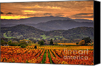 Northern California Canvas Prints - Classic Napa Valley 2 Canvas Print by Mars Lasar
