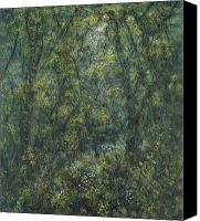 Magic Forest Canvas Prints - Clearing Canvas Print by De Es Schwertberger
