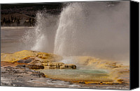 Yellowstone Park Canvas Prints - Clepsydra Geyser Yellowstone National Park Canvas Print by Bruce Gourley