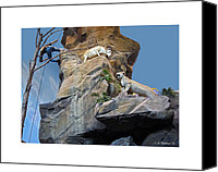 Mountain Lion Digital Art Canvas Prints - Cliffhanger Canvas Print by Brian Wallace