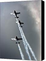 Extra 300 Canvas Prints - Climbing Up Canvas Print by Angel  Tarantella