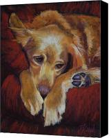 Dogs Canvas Prints - Close to Dreamland Canvas Print by Billie Colson