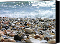Wave Canvas Prints - Close Up From A Beach Canvas Print by Romeo Reidl
