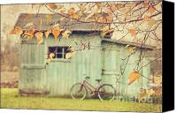Shed Canvas Prints - Closeup of leaves with old barn in background Canvas Print by Sandra Cunningham