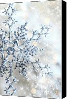 Snowy Night Canvas Prints - Closeup of snowflake Canvas Print by Sandra Cunningham