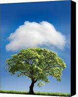 Green Canvas Prints - Cloud Cover Canvas Print by Mal Bray