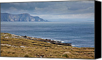 Achill Island Canvas Prints - Coast of Achill Island Canvas Print by Gabriela Insuratelu
