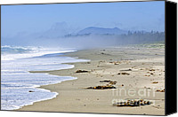 Canada Canvas Prints - Coast of Pacific ocean in Canada Canvas Print by Elena Elisseeva