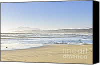 Sandy Canvas Prints - Coast of Pacific ocean on Vancouver Island Canvas Print by Elena Elisseeva