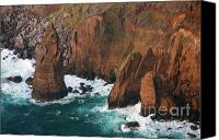 Azoren Canvas Prints - Coastal detail Canvas Print by Gaspar Avila
