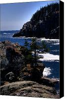 Acadia Canvas Prints - Coastal Maine Canvas Print by Skip Willits