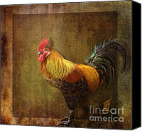 Rosy Hall Digital Art Canvas Prints - Cock of the walk Canvas Print by Rosy Hall