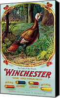 Winchester Canvas Prints - Cock Of The Woods Canvas Print by Unknown