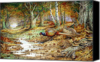 Pheasant Painting Canvas Prints - Cock Pheasant and Sulphur Tuft Fungi Canvas Print by Carl Donner