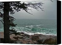 Acadia Canvas Prints - Cold Green Surf Canvas Print by Skip Willits