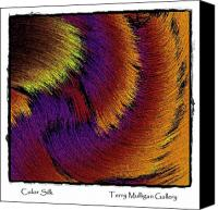 All Canvas Prints - Color Silk Canvas Print by Terry Mulligan