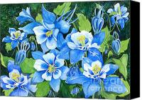 Blue Flowers Painting Canvas Prints - Colorado Columbines Canvas Print by Barbara Jewell