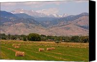 Buy Framed Prints Canvas Prints - Colorado Hay  Canvas Print by James Bo Insogna