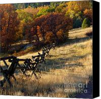 Tree Canvas Prints - Colorful Colorado 2 Canvas Print by Deniece Platt