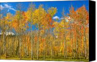 "\""striking Photography\\\"" Canvas Prints - Colorful Colorado Autumn Landscape Canvas Print by James Bo Insogna"