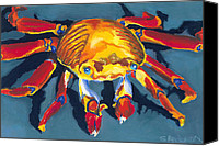 Animal Pastels Canvas Prints - Colorful Crab Canvas Print by Stephen Anderson