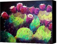 Cactus Canvas Prints - Colorful Fruit Canvas Print by Candy Mayer