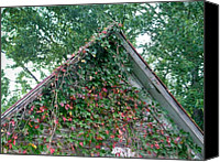 Gable Canvas Prints - Colorful Gable Canvas Print by Douglas Barnett