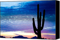 James Insogna Canvas Prints - Colorful Southwest Desert Sunrise Canvas Print by James Bo Insogna