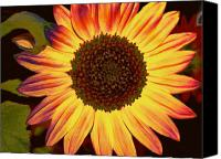 Sunflowers Canvas Prints - Colorful Sunflower Canvas Print by Cathie Tyler